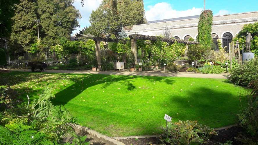 3ES   Laserscanning   opmeting tuinen